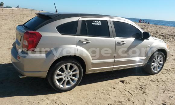 Buy Dodge Caliber  Car in Walvis Bay in Namibia