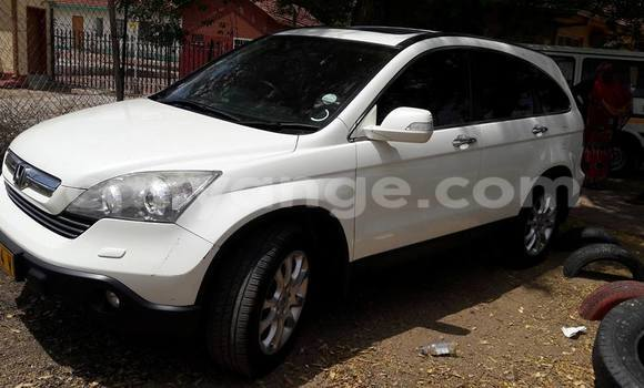 Buy Honda CR-V White Car in Windhoek in Namibia