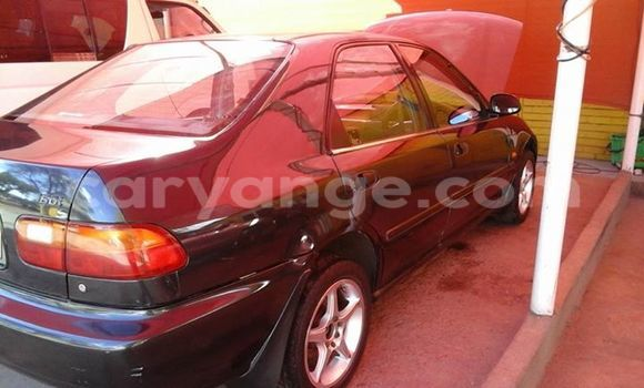 Buy Honda Civic Black Car in Windhoek in Namibia