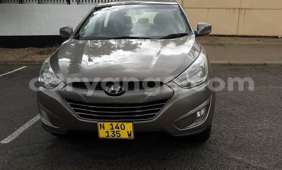 Buy Hyundai H1 Other Car in Windhoek in Namibia