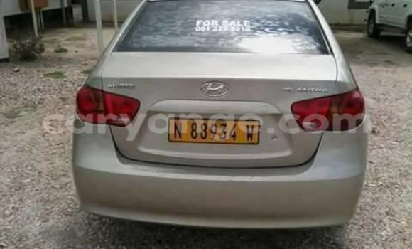 Buy Hyundai Elantra Silver Car in Windhoek in Namibia