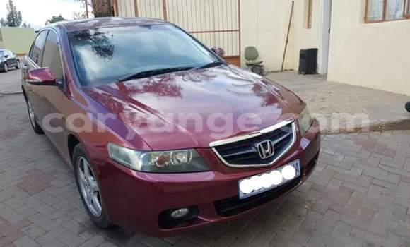 Buy Honda Accord Red Car in Windhoek in Namibia