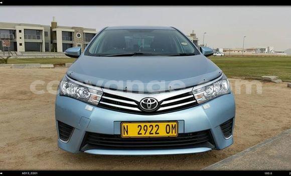 Buy Toyota Corolla Silver Car in Windhoek in Namibia