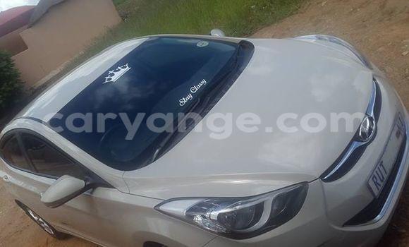 Buy Hyundai Elantra White Car in Windhoek in Namibia
