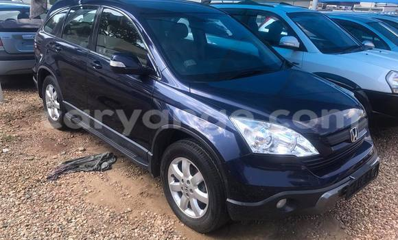 Buy Honda CR-V Black Car in Windhoek in Namibia