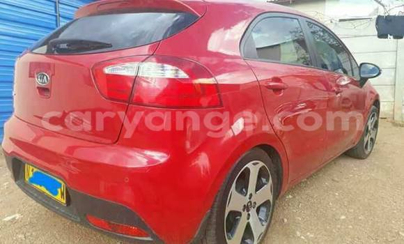 Buy Kia Rio Red Car in Windhoek in Namibia