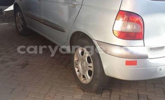Buy Renault Scenic Silver Car in Windhoek in Namibia