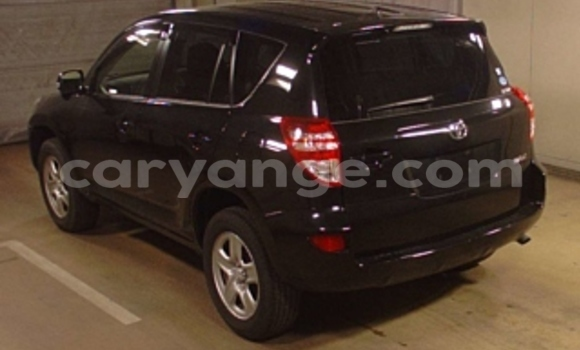 Buy Toyota RAV4 Black Car in Windhoek in Namibia