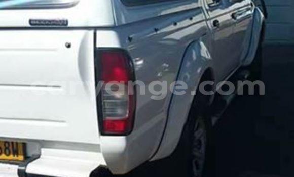 Buy Nissan Hardbody White Car in Windhoek in Namibia