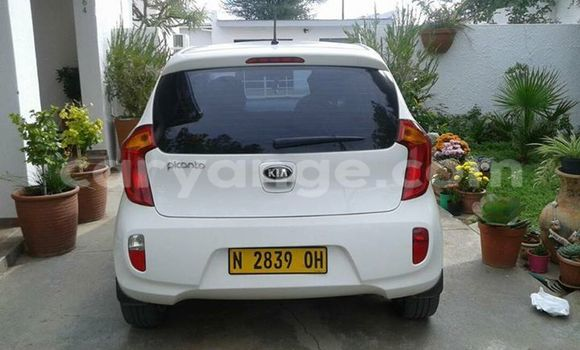 Buy Kia Picanto White Car in Windhoek in Namibia