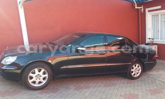 Buy Mercedes-Benz S-Class Black Car in Windhoek in Namibia