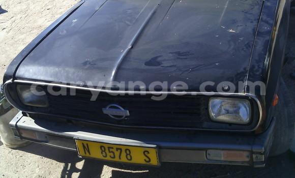 Buy Nissan Pickup Black Car in Swakopmund in Namibia