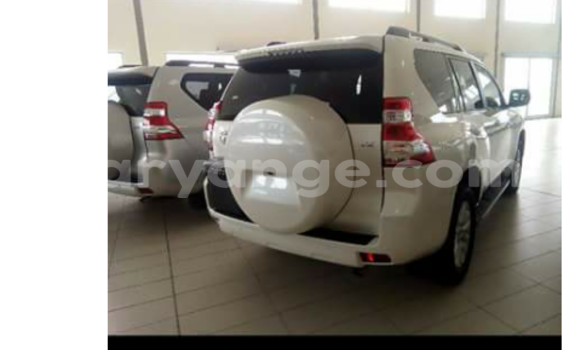 Buy Toyota Prado Silver Car in Swakopmund in Namibia