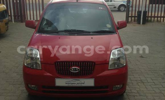 Buy Kia Picanto Red Car in Windhoek in Namibia