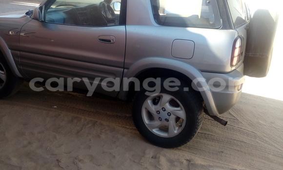Buy Toyota RAV4 Silver Car in Walvis Bay in Namibia