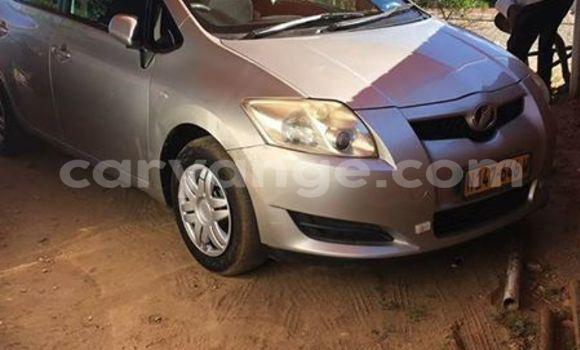 Buy Toyota Auris Silver Car in Windhoek in Namibia
