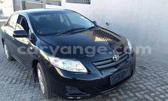 Buy Toyota Corolla Black Car in Windhoek in Namibia