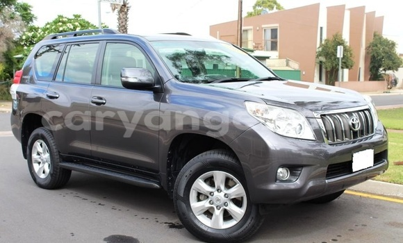 Buy Toyota Land Cruiser Prado Other Car in Windhoek in Namibia