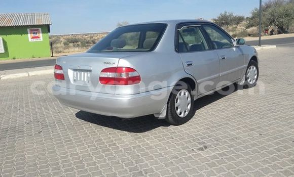 Buy Toyota Corolla Silver Car in Windhoek in Namibia