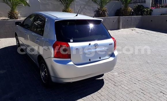 Buy Toyota Runx Silver Car in Windhoek in Namibia