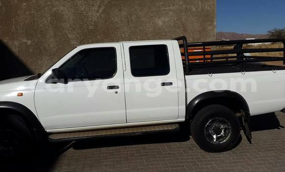 Buy Nissan Hardbody White Car in Windhoek in Namibia