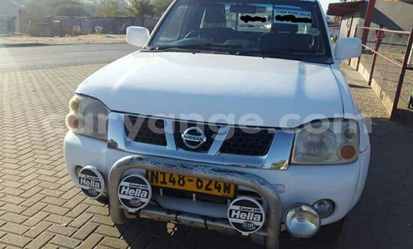 Buy new and used Nissan Hardbody White Car in Windhoek in Namibia